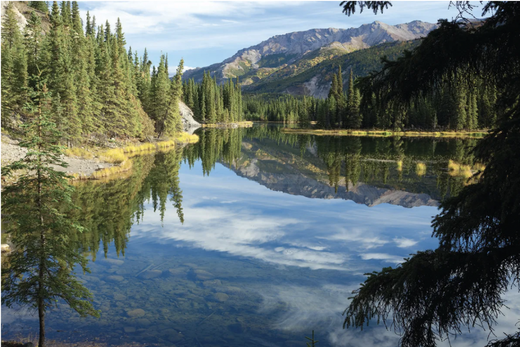Reflections in the beautiful blue waters of Horseshoe Lake at Denali National Park in Alaska.