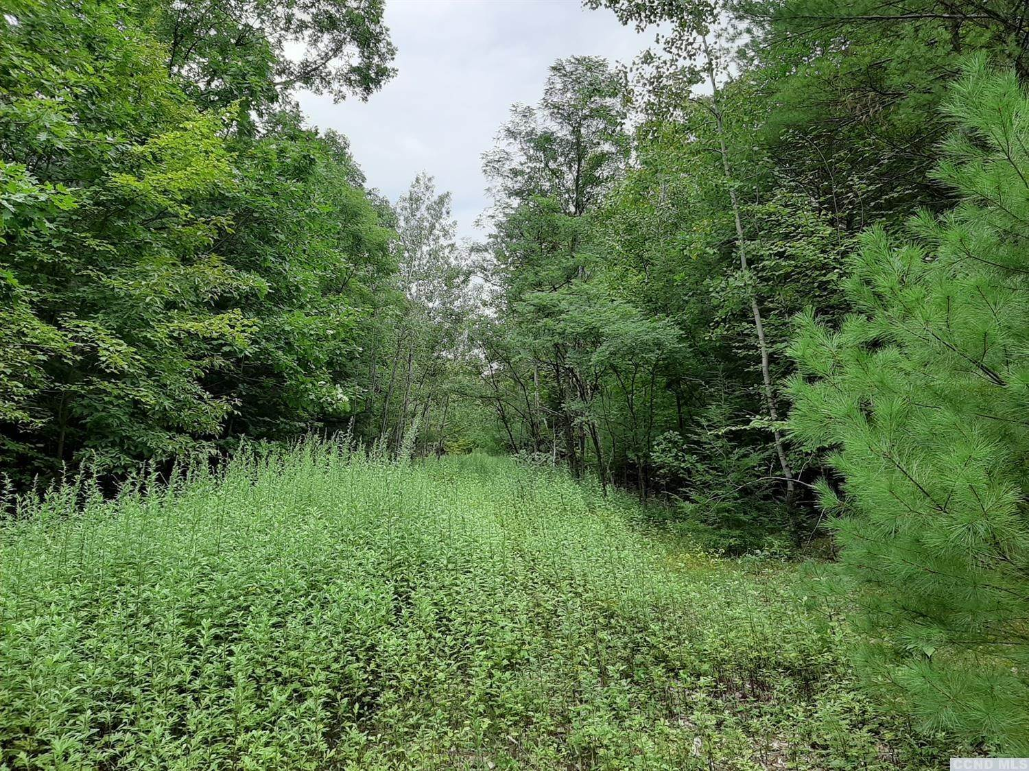 Land for Sale at County Route 23B Cairo, New York 12413 United States