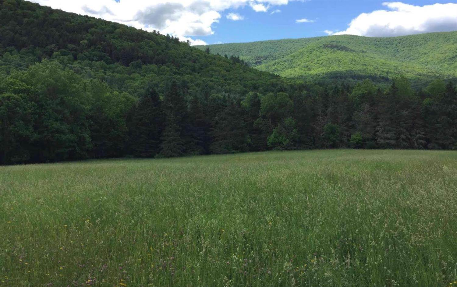 Land for Sale at 1 State Highway 28 Margaretville, New York 12455 United States