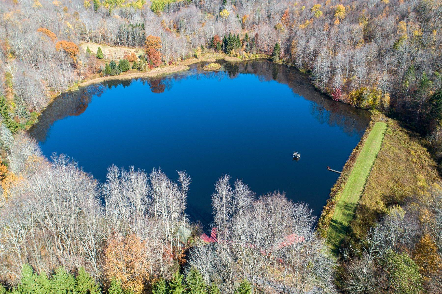 4. Single Family Homes for Sale at Realty Exceeds the Dreams on 17 Acre Private Lake 444 Skunk Hollow Road, Off Fall Clove Rd Andes, New York 13731 United States