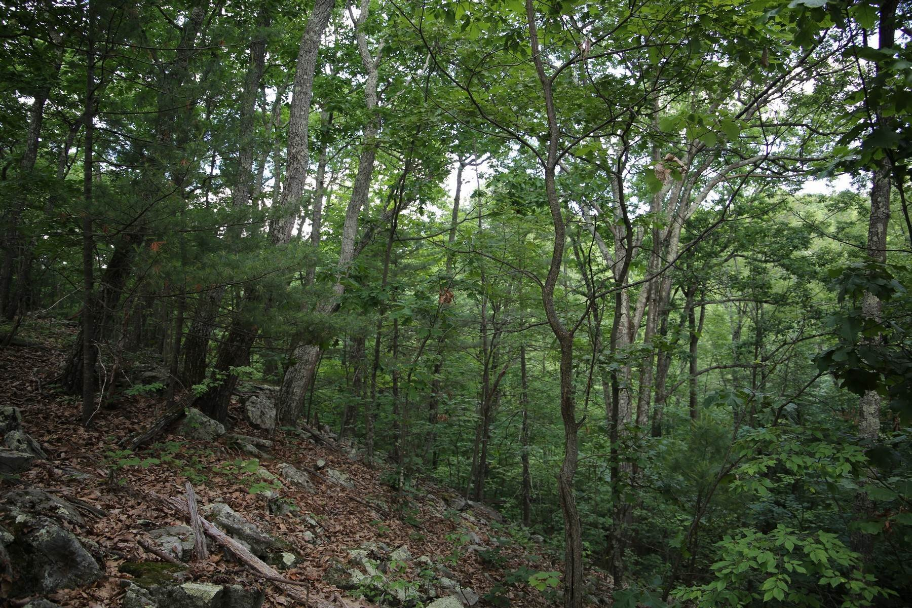 6. Land for Sale at Lily Lake Rd with access off Kisor Rd 70 Kisor (easement) Road, Lily Lake Rd Highland, New York 12528 United States