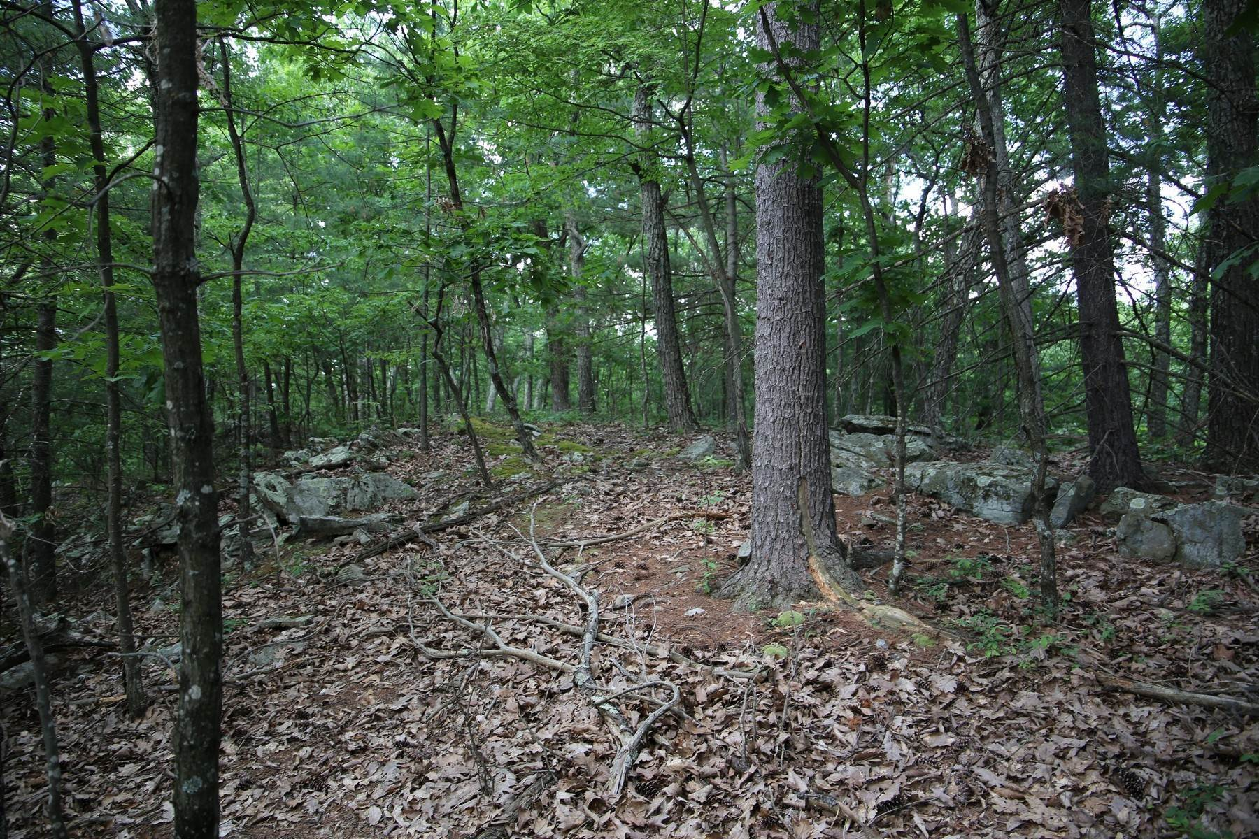 5. Land for Sale at Lily Lake Rd with access off Kisor Rd 70 Kisor (easement) Road, Lily Lake Rd Highland, New York 12528 United States
