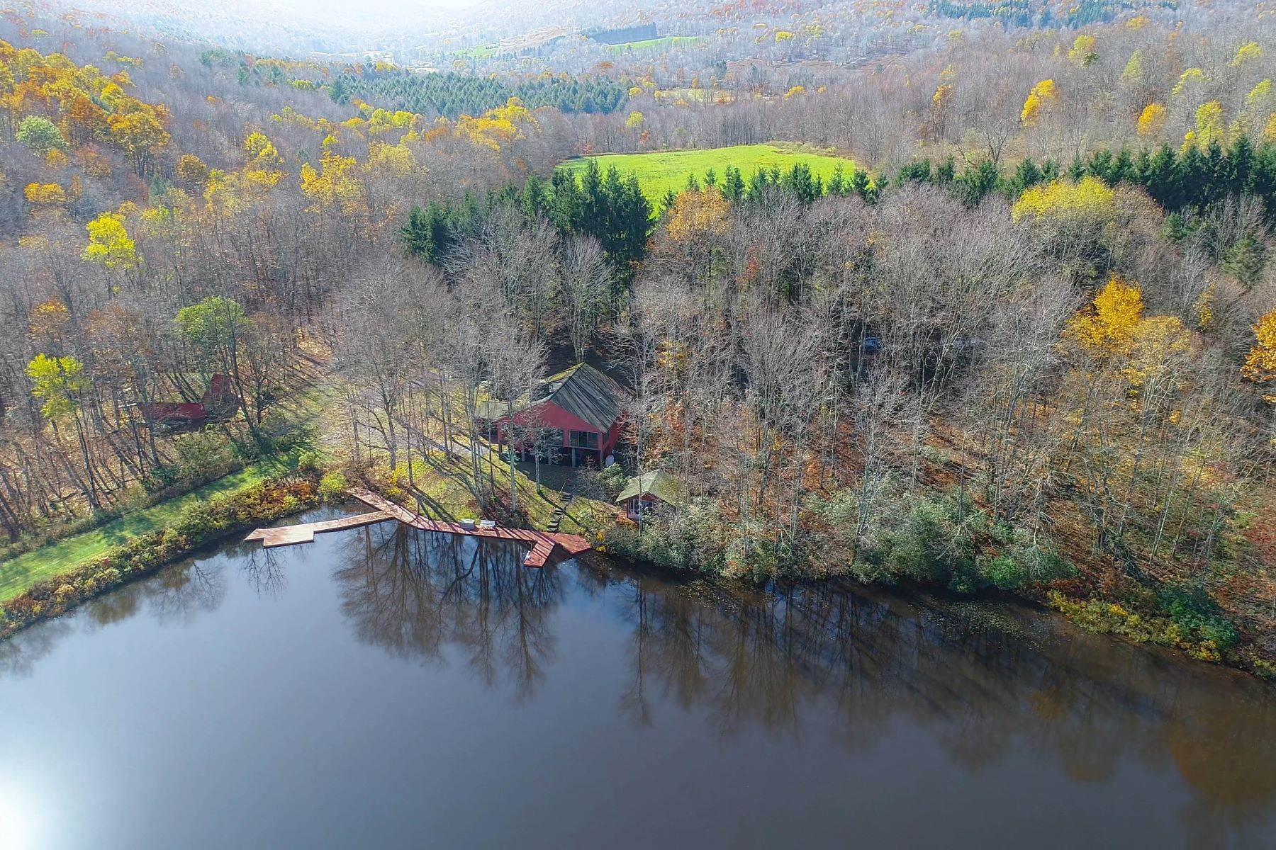 10. Single Family Homes for Sale at Realty Exceeds the Dreams on 17 Acre Private Lake 444 Skunk Hollow Road, Off Fall Clove Rd Andes, New York 13731 United States