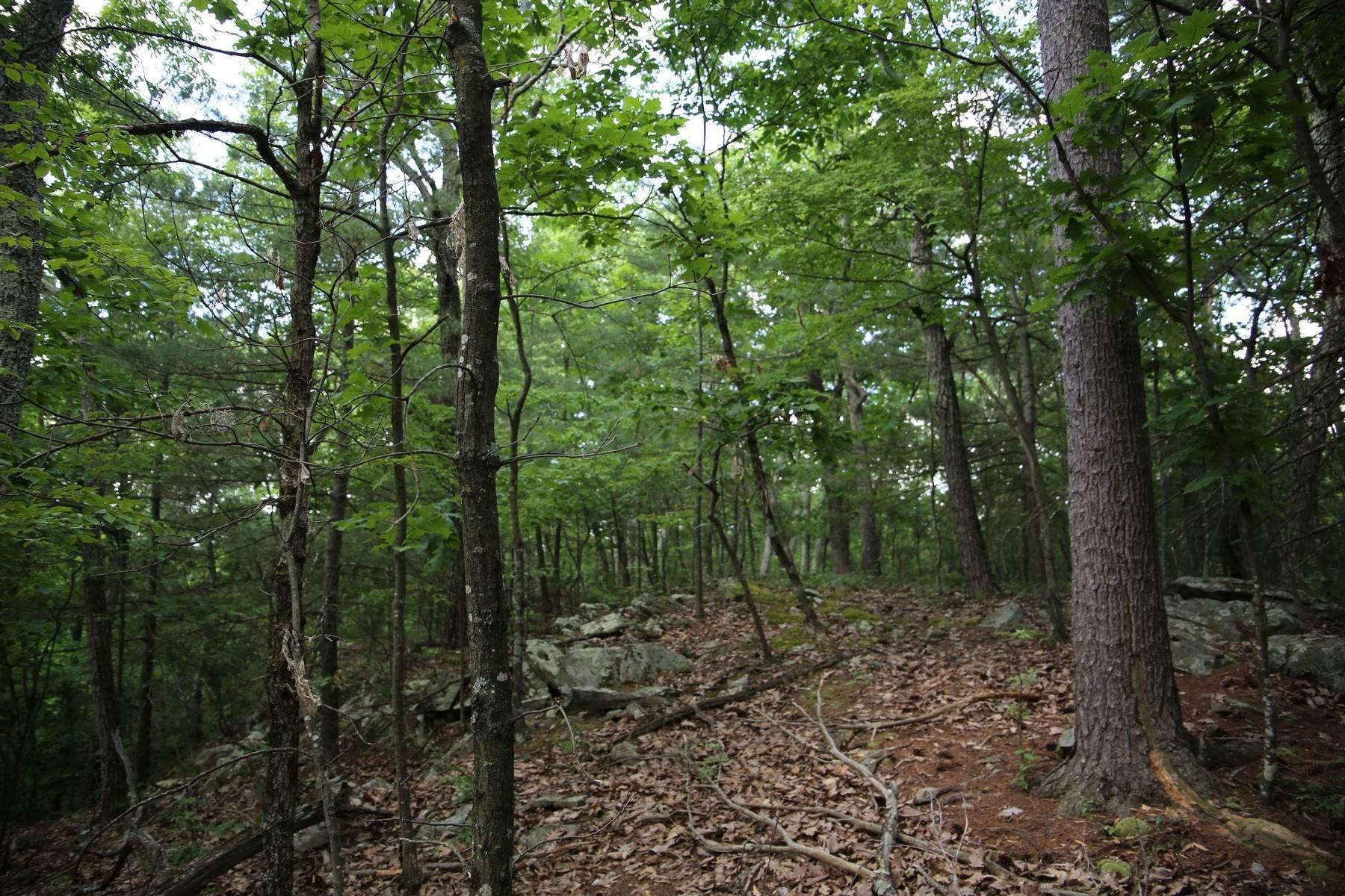 10. Land for Sale at Lily Lake Rd with access off Kisor Rd 70 Kisor (easement) Road, Lily Lake Rd Highland, New York 12528 United States