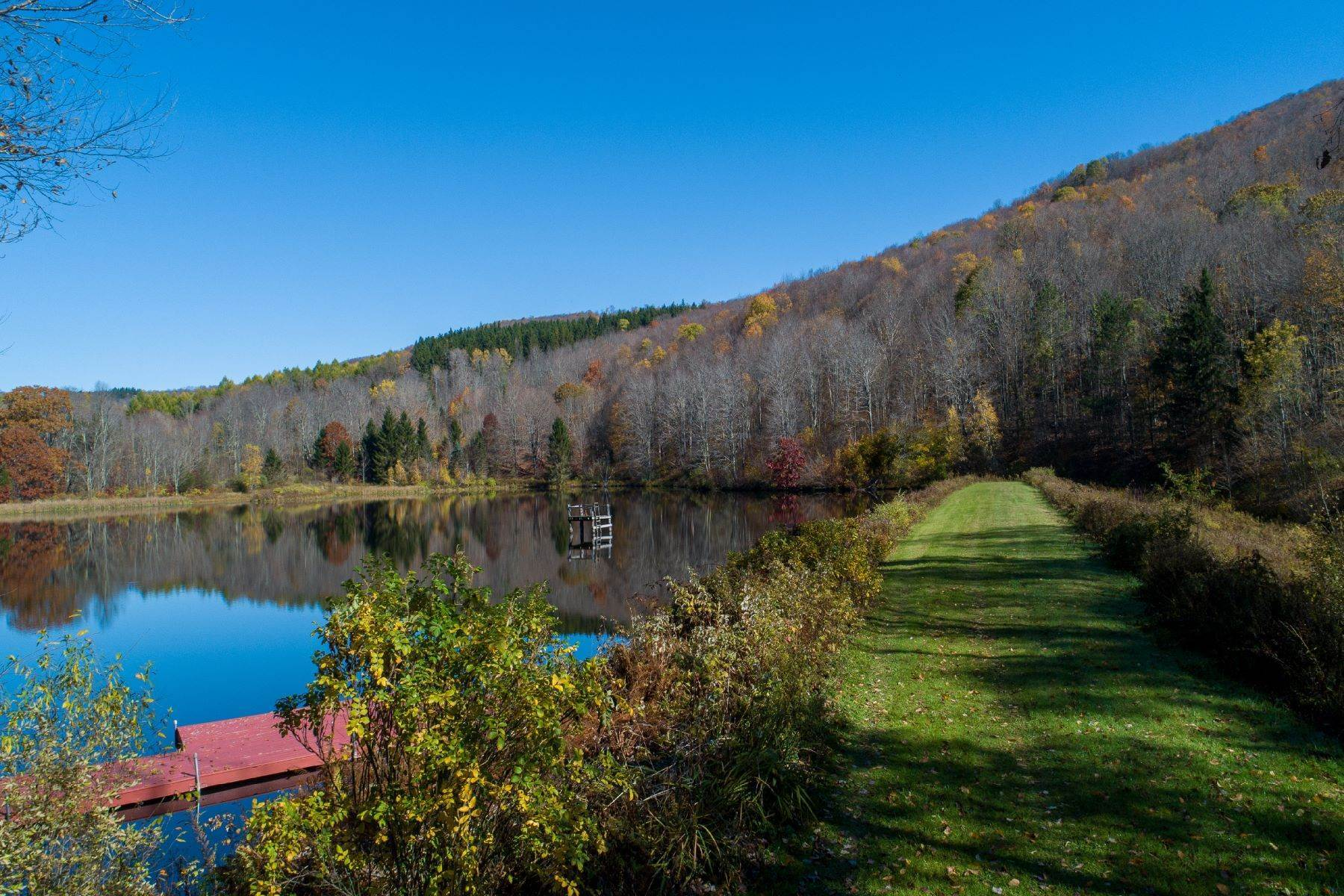 8. Single Family Homes for Sale at Realty Exceeds the Dreams on 17 Acre Private Lake 444 Skunk Hollow Road, Off Fall Clove Rd Andes, New York 13731 United States