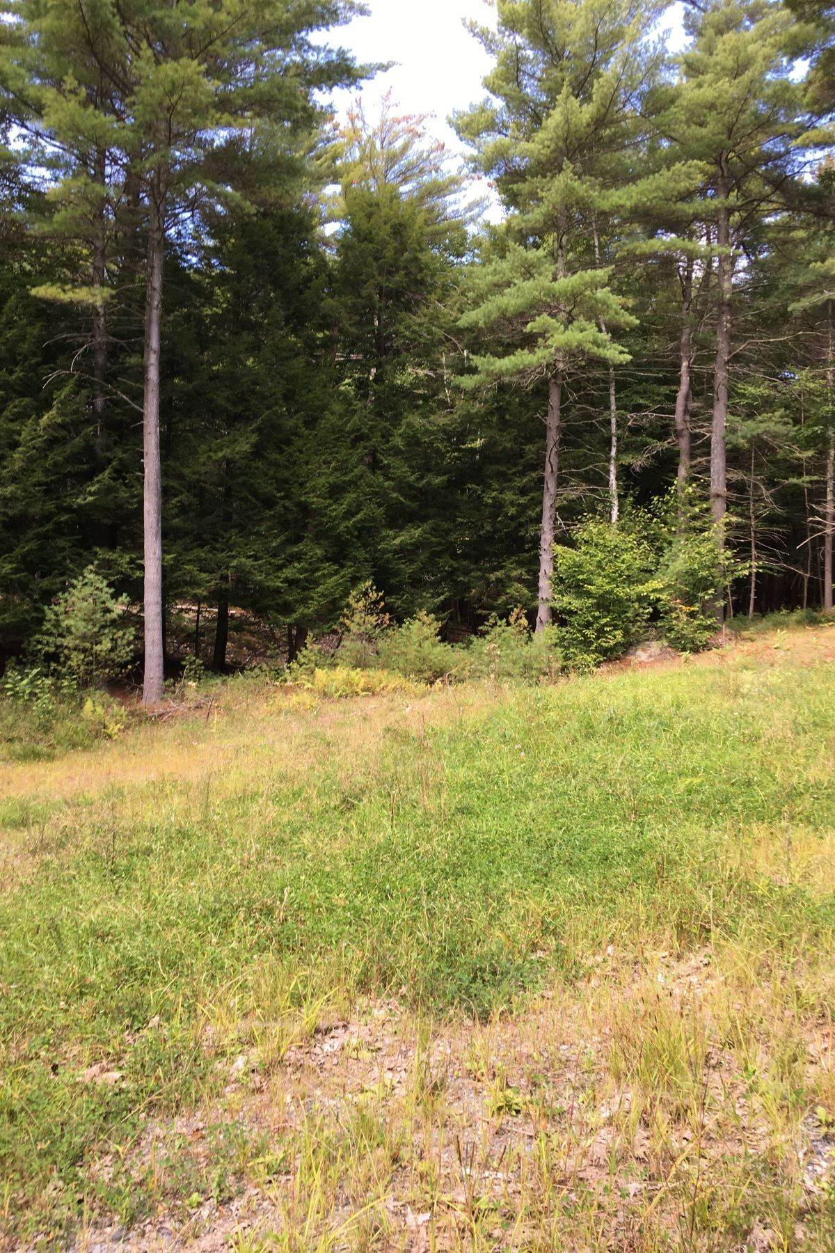Land for Sale at County Road 10, Corinth, NY 12822 County Road 10 Corinth, New York 12822 United States
