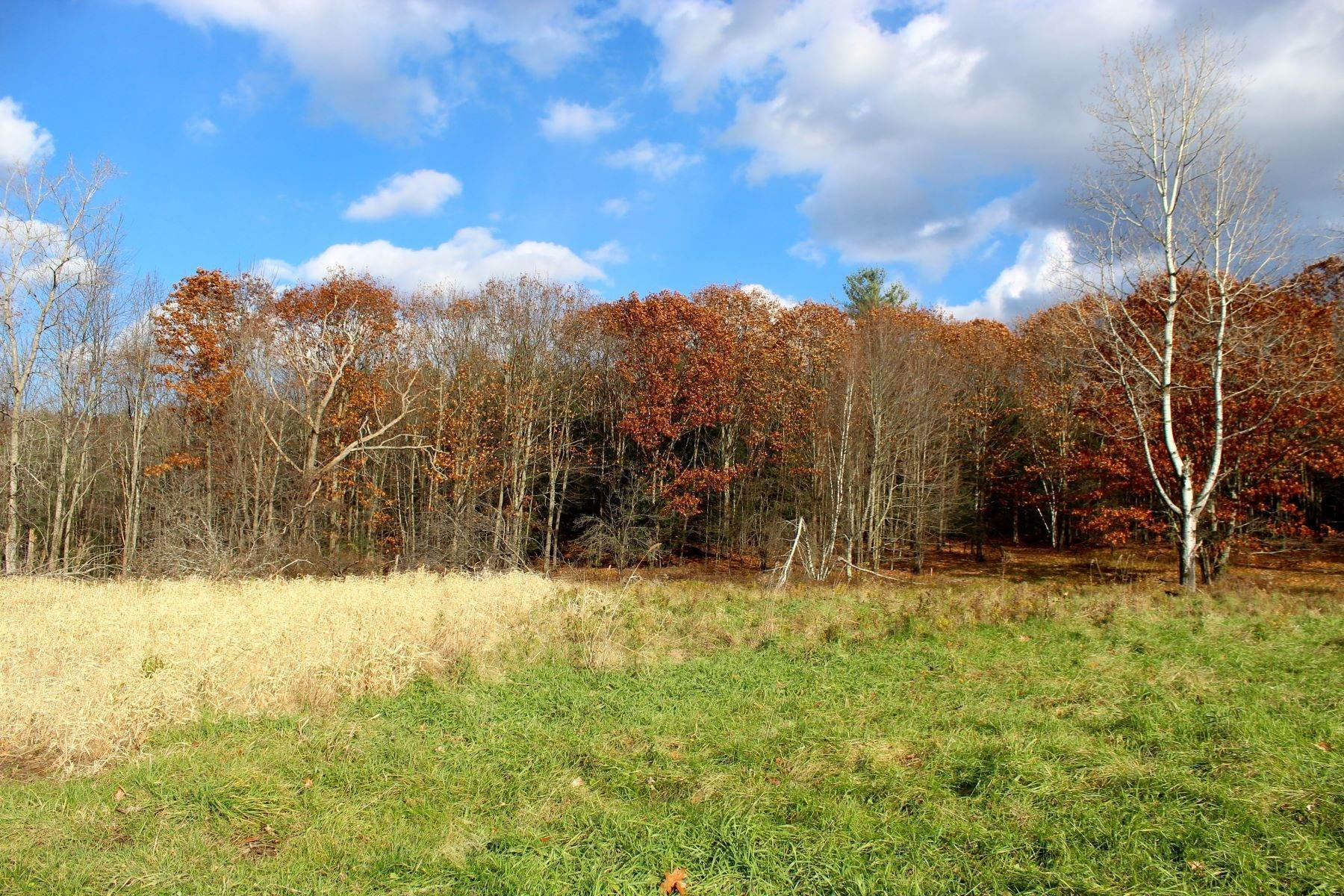 Land for Sale at Cleared Land in Averill Park, NY 61 Eastern Union Turnpike Averill Park, New York 12018 United States