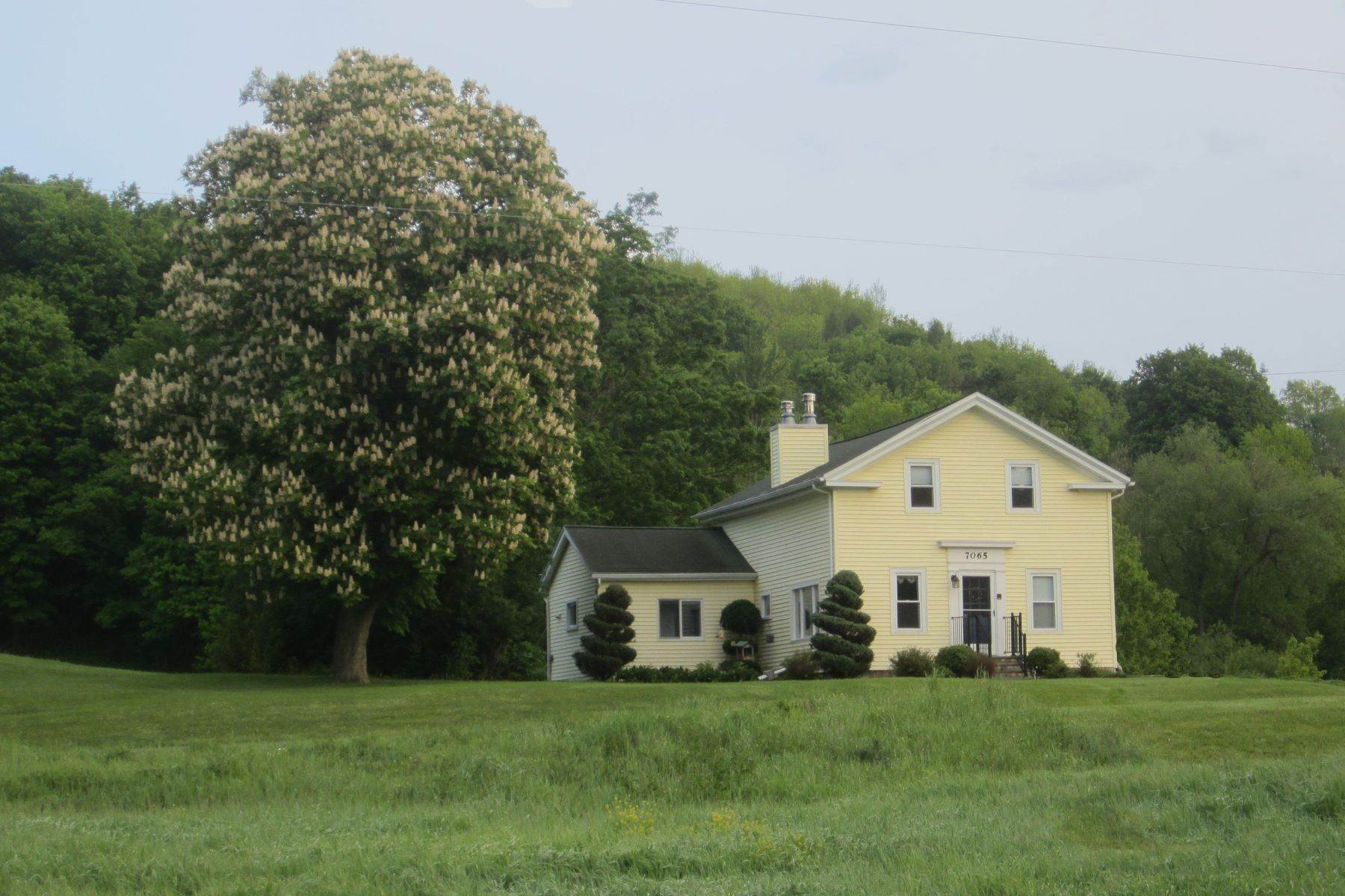 Single Family Homes för Försäljning vid 7065 County Route 14 Road, Bath, Ny, 14810 7065 County Route 14 Road Bath, New York 14810 Förenta staterna